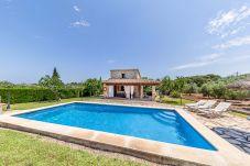 Villa in Pollensa / Pollença - Villa Roqueta