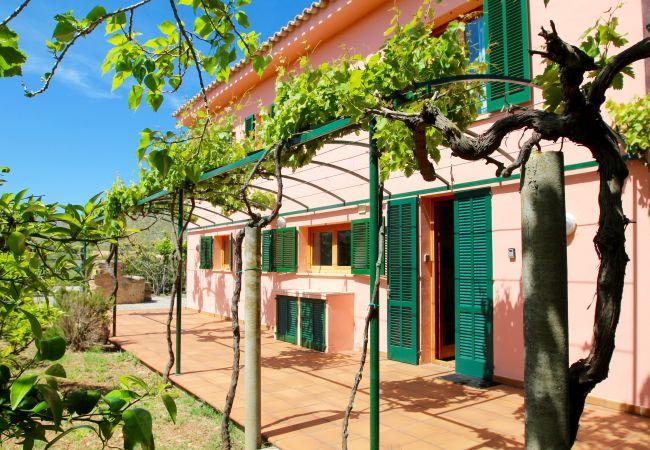 Villa in Port de Pollença - Villa Roqueta de Siller