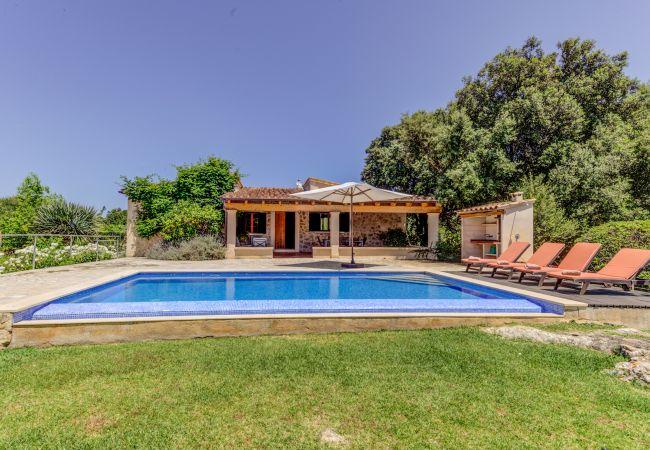 Villa in Pollensa / Pollença - Villa Pontarro