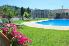 Villa in Vlachatika - Villa Dolce Terra