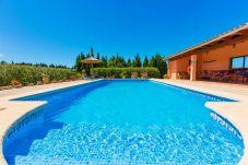 Villa in Alcudia - Villa Gosp Torres